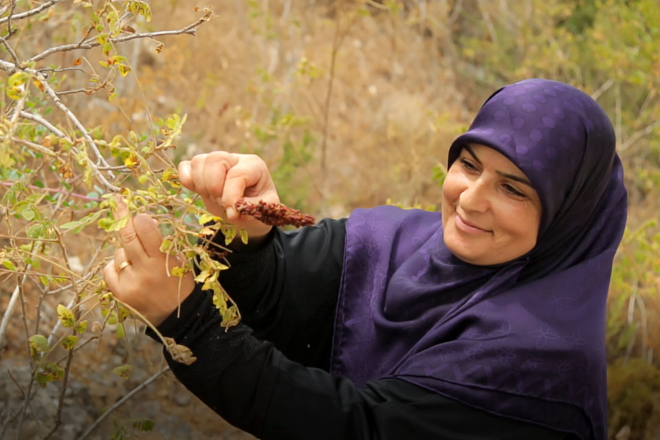 Ibtissam Jaber has transitioned from being a small-scale producer to a profitable entrepreneur