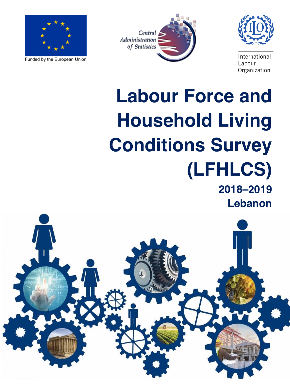 Labour Force and Household Living Conditions Survey (LFHLCS) 2018–2019