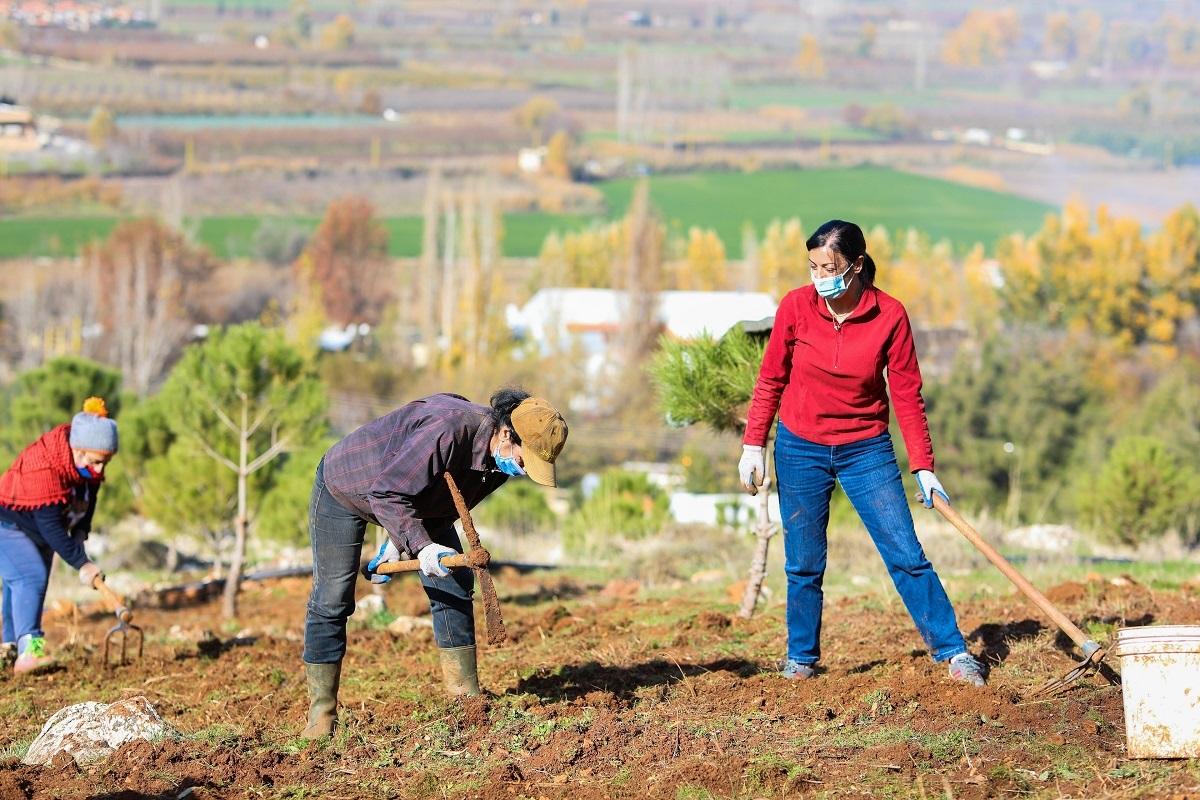 مذكّرة إعلامية حول دور المرأة في قطاع الزراعة في لبنان