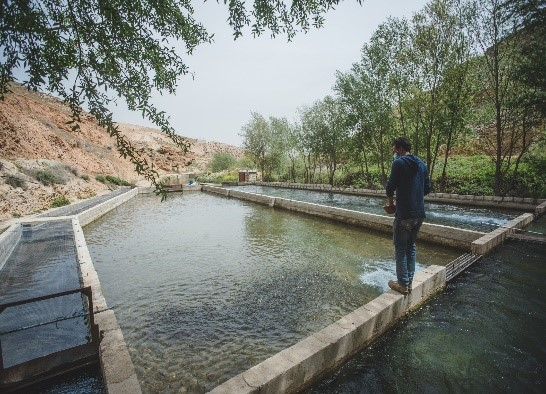 FAO Briefing Note: Fisheries & Aquaculture in Lebanon