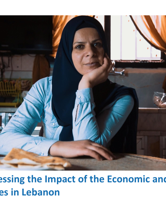 Assessing the Impact of the Economic and COVID-19 Crises in Lebanon